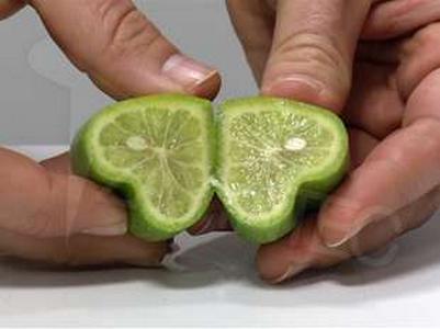 Фигурные формы выращивания для овощей 567